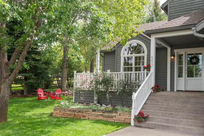 Basalt Single Family Home For Sale: 550 Riverside Drive