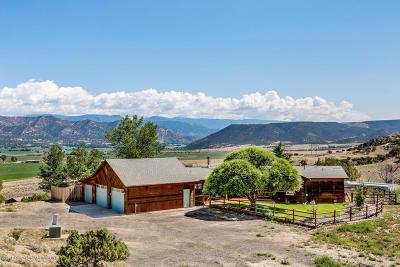 Silt Single Family Home For Sale: 365 Shoshoni Drive