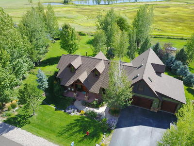 Carbondale Single Family Home For Sale: 241 Larkspur Drive