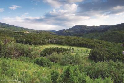 Glenwood Springs Farm & Ranch For Sale: 4424 County Road 134 #Paradise