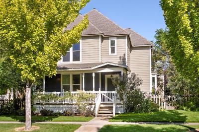 Carbondale Single Family Home For Sale: 341 Lamprecht Drive