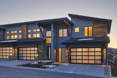 Carbondale Condo/Townhouse For Sale: 230 Overlook Ridge