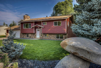 Carbondale Single Family Home For Sale: 605 Grace Drive