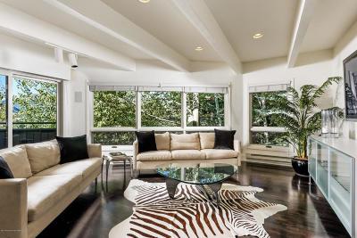 Aspen Single Family Home For Sale: 145 Nighthawk Drive