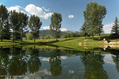 Aspen Farm & Ranch For Sale: 1214 Owl Creek Ranch