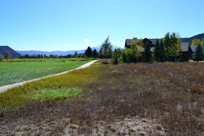 Carbondale Residential Lots & Land For Sale: H-31 Tbd Spring Loop