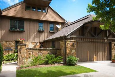 Carbondale Condo/Townhouse For Sale: 112 Golden Bear Drive