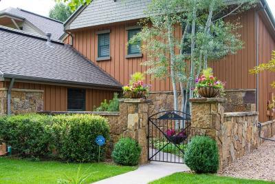Carbondale Condo/Townhouse For Sale: 99 Golden Bear