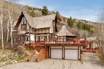 Aspen Rental For Rent: 184 Mountain Laurel