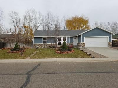 Silt Single Family Home For Sale: 418 Eagles Nest Drive