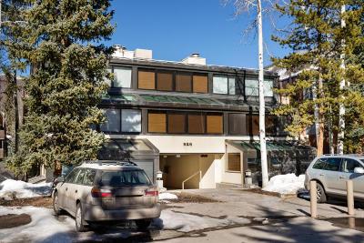 Aspen Rental For Rent: 926 Waters Avenue #202