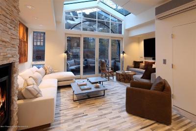 Aspen Rental For Rent: 334 Summit Street #Unit A