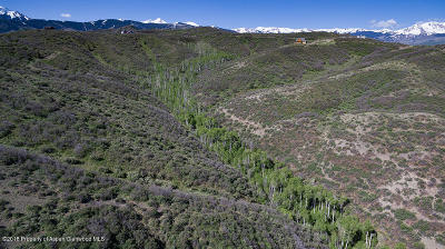 Snowmass Residential Lots & Land For Sale: Tbd Rabbit Way