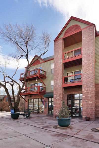 Basalt Condo/Townhouse For Sale: 355 Gold Rivers Court #Unit 333