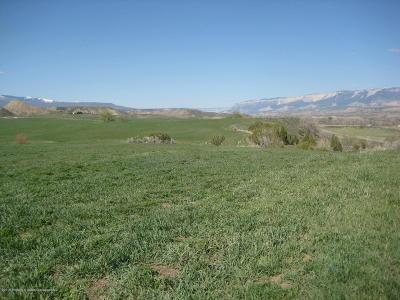 Silt Farm & Ranch For Sale: Tbd County Rd 331