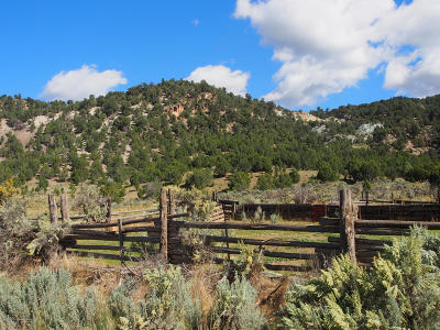 Rifle Farm & Ranch For Sale: W Rifle Creek Road