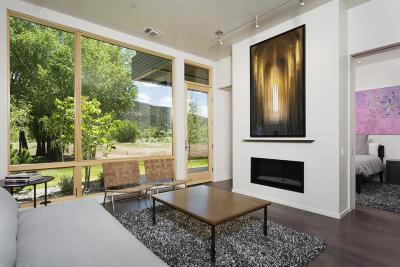 Basalt Condo/Townhouse For Sale: 102 Evans Road #Unit 106