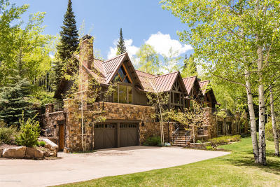 Snowmass Single Family Home For Sale: 1191 Wood Road