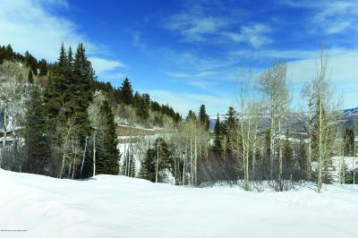 Aspen Residential Lots & Land For Sale: Tbd Pfister Drive