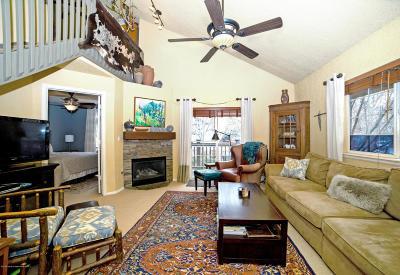 Basalt Condo/Townhouse For Sale: 5202 Elk Lane