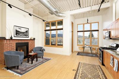 Basalt Condo/Townhouse For Sale: 231 Robinson Street # 204