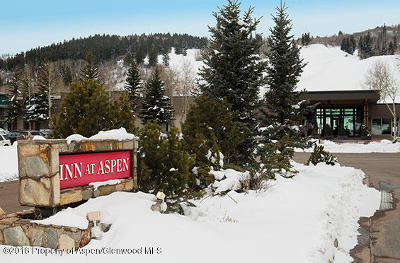 Aspen Condo/Townhouse For Sale: 38750 Highway 82 #1153