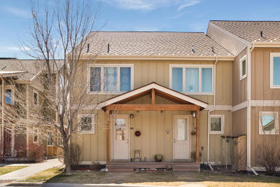 Carbondale Condo/Townhouse For Sale: 110 Linden Circle #Unit 1