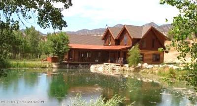 Silt Single Family Home For Sale: 0170 Cedar Hills Road