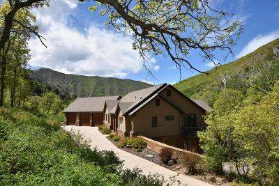 Glenwood Springs Single Family Home For Sale: 956 County Road 132