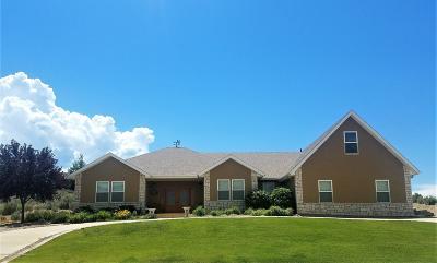 Battlement Mesa, Parachute Single Family Home For Sale: 38 Meadow Creek Drive