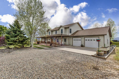 Silt Single Family Home For Sale: 877 County Road 229