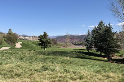 Carbondale Residential Lots & Land For Sale: 131 River Glen #Lot Cv-3