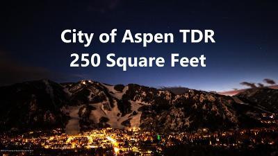 Aspen Residential Lots & Land For Sale: Tdr City City Of Aspen