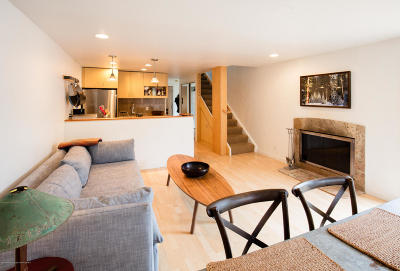 Aspen Condo/Townhouse For Sale: 209 Aspen Airport Business Center #Unit: J