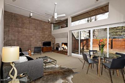 Aspen Rental For Rent: 311 S Aspen Street #2