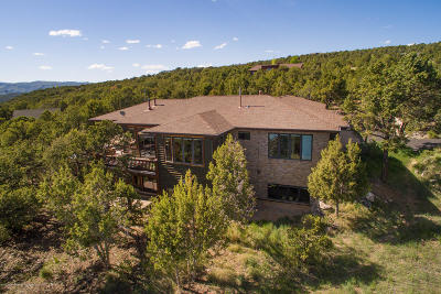 Glenwood Springs Single Family Home For Sale: 491 Elk Springs Drive