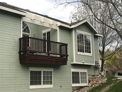 Glenwood Springs Condo/Townhouse For Sale: 161 Orchard Lane