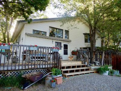 Silt Single Family Home For Sale: 353 Co Rd 237