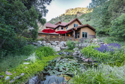 Glenwood Springs Single Family Home For Sale: 1558 County Road 129