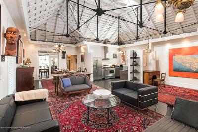 Basalt Single Family Home For Sale: 204 E Sopris Drive