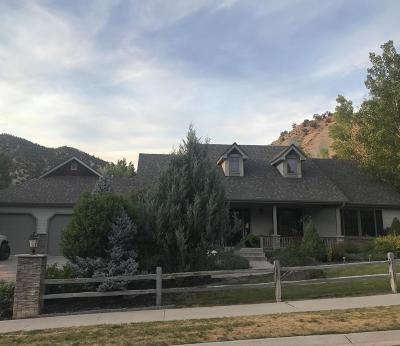 New Castle Single Family Home For Sale: 638 N Wildhorse Drive