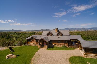 Silt Farm & Ranch For Sale: 9109 County Road #311