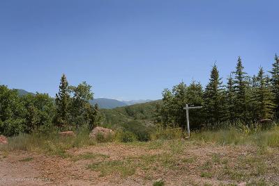 Aspen Residential Lots & Land For Sale: 148 Tabula Rasa Lane