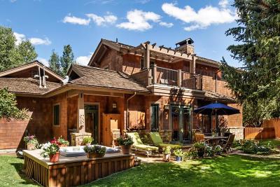 Aspen Condo/Townhouse For Sale: 1263 Bunny Court