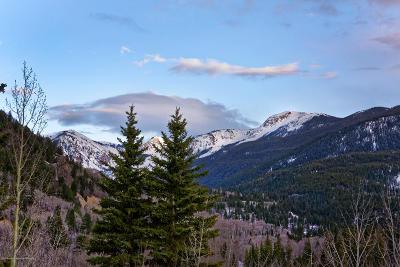 Aspen Residential Lots & Land For Sale: 45105 E Highway 82