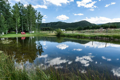 Snowmass Farm & Ranch For Sale: 1151 Capitol Creek Road