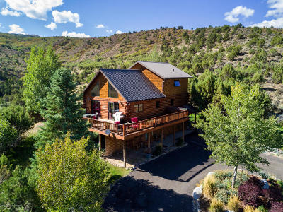 Basalt Farm & Ranch For Sale: 1436 Hooks Spur Lane