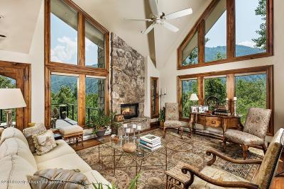 Aspen Condo/Townhouse For Sale: 114 Mountain Laurel Drive #B