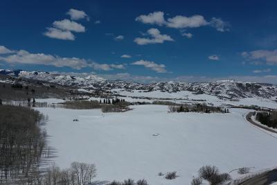 Aspen, Snowmass Single Family Home For Sale: 1313&1333 W Buttermilk Road