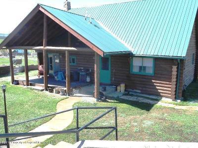Silt Farm & Ranch For Sale: 529 Co Rd 326